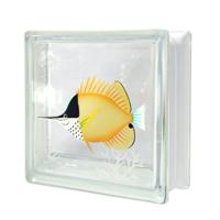 pmC0WYH-longnosebutterflyfish